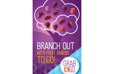 Branch Out Fruit Snacks image