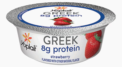 Image result for yougurt protein