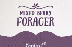 Mixed Berry Forager
